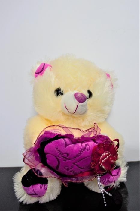 Mini ursulet crem din plus 20-25 cm, cadoul ideal de Valentine's Day 0